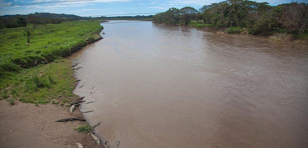 Krokodile Jacó Costa Rica